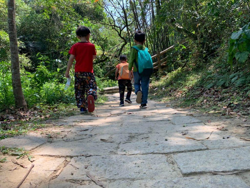 台南新化林場小男生出遊